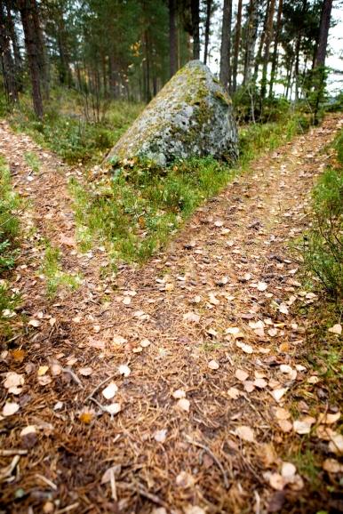 Path Split