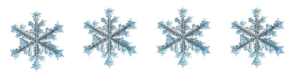 four snowflakes