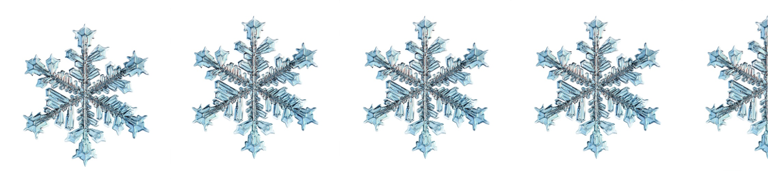 4 and half snowflakes