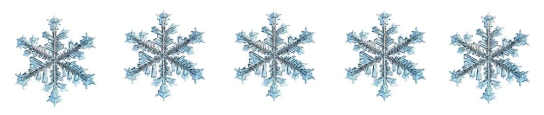 5 snowflakes